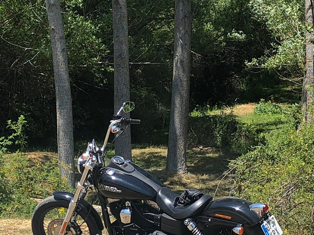 2012 HARLEY-DAVIDSON Street Bob moto en alquiler (1)