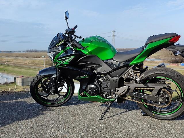 2015 Kawasaki Z 300 motor te huur (3)