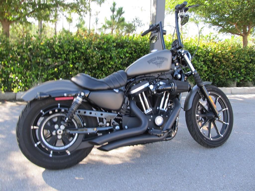 HARLEY-DAVIDSON Iron 883 moto en alquiler (1)
